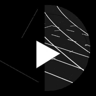 Video reklama - Black mango